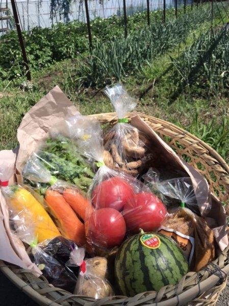 画像1: 産地直送!那須塩原市産 旬の野菜・果物詰合わせ ゆうパック100サイズ *注文から2〜5日で発送 CR-YSI3800 (1)