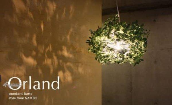 画像1: オーランド ペンダントランプ 家電 照明 CR-S1950093 (1)